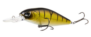 lj-lure hard-shad x 80f - top 1 copy