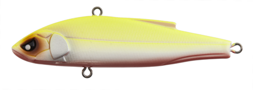 VIB - LJVIB78-311